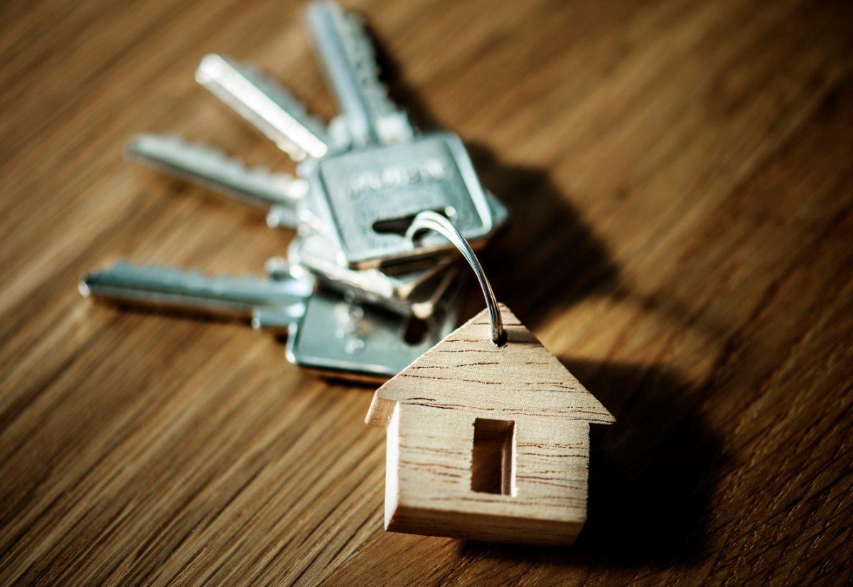 Real Estate Revolution!